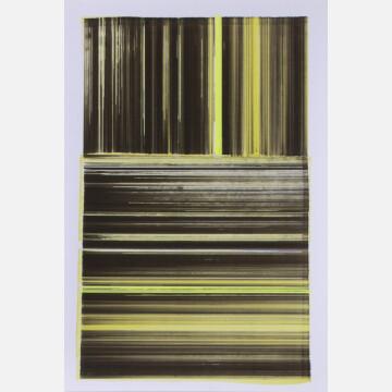 Yellow xy Score, 2014