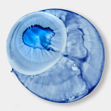 Untitled (Blue Eyeball)